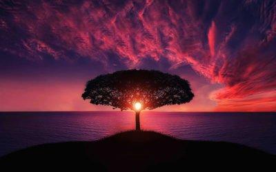 Bist Du Dir Deiner Glaubenssätze und Muster bewusst?